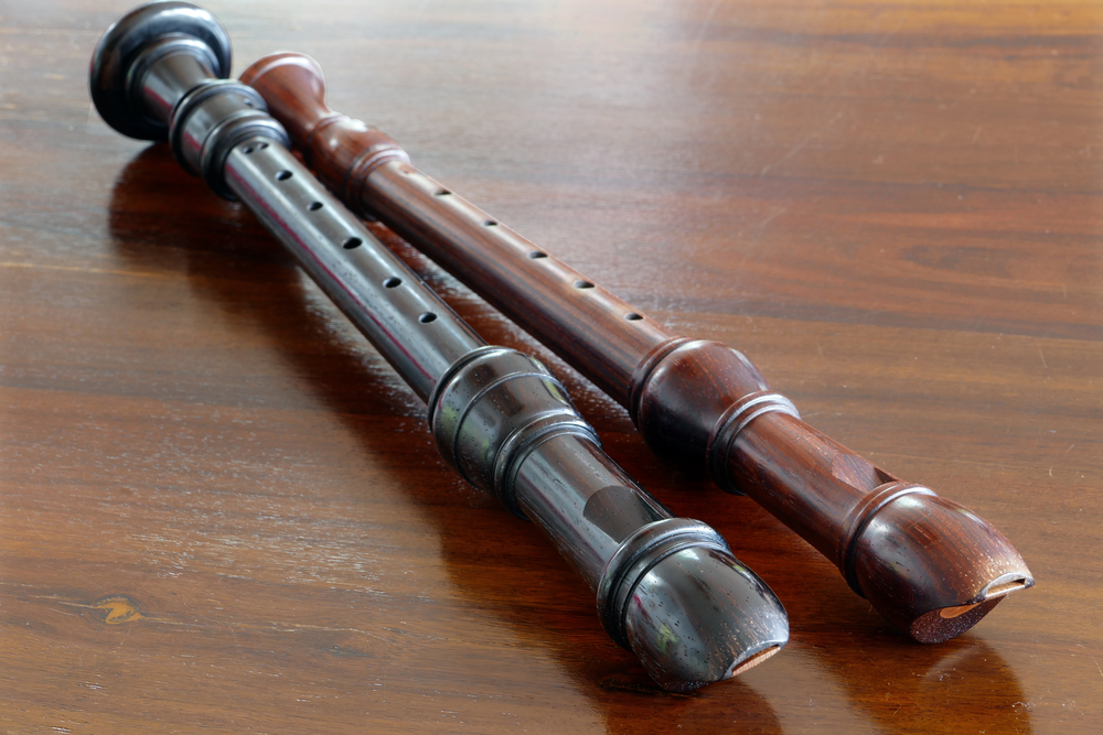 How Does A Recorder Work